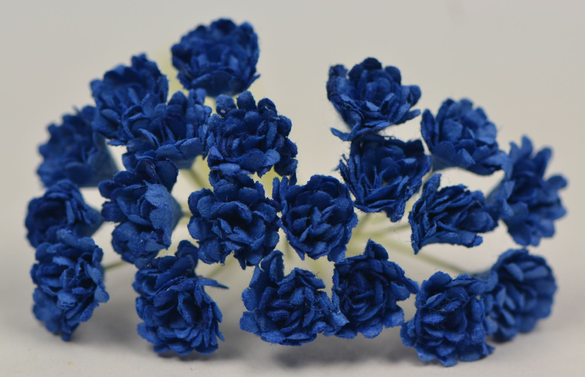 DARK ROYAL BLUE GYPSOPHILA FORGET ME NOT Mulberry Paper Flowers